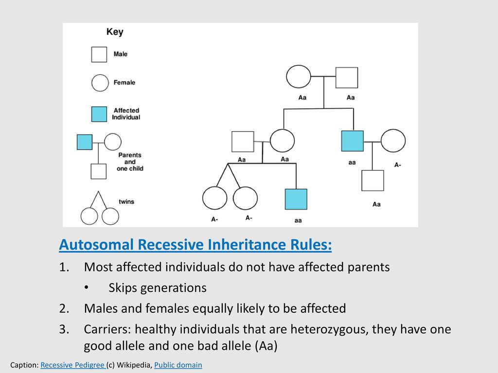 Autosomal Recessive Inheritance Rules