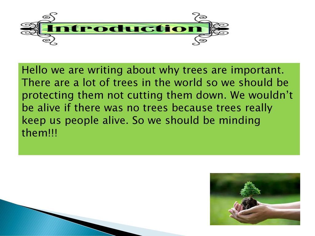 Why Are Trees Important ? - ppt download