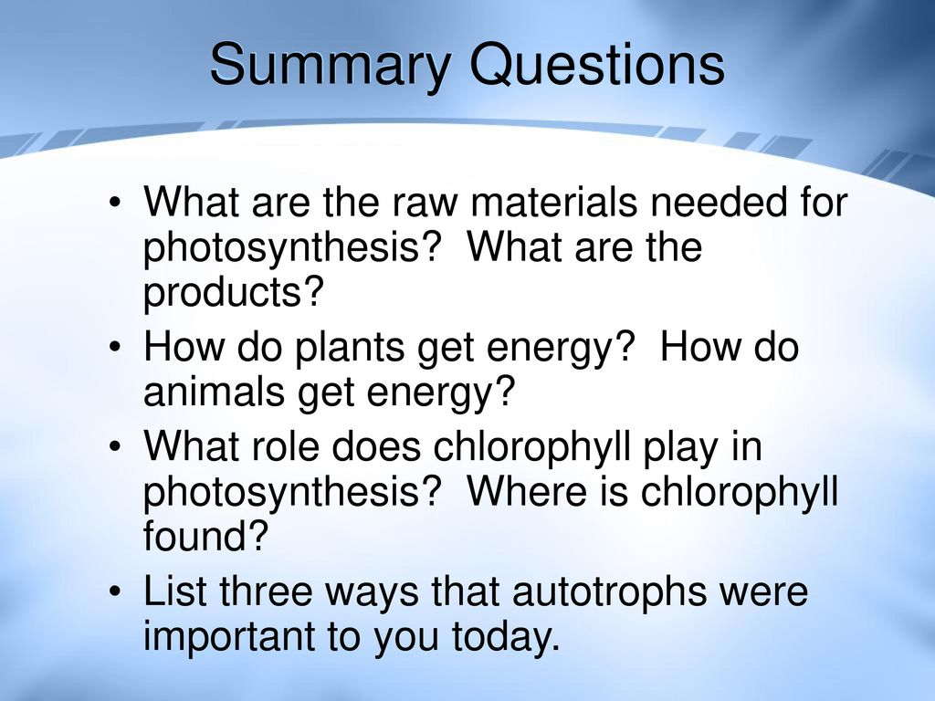 Summary Questions What are the raw materials needed for photosynthesis What are the products