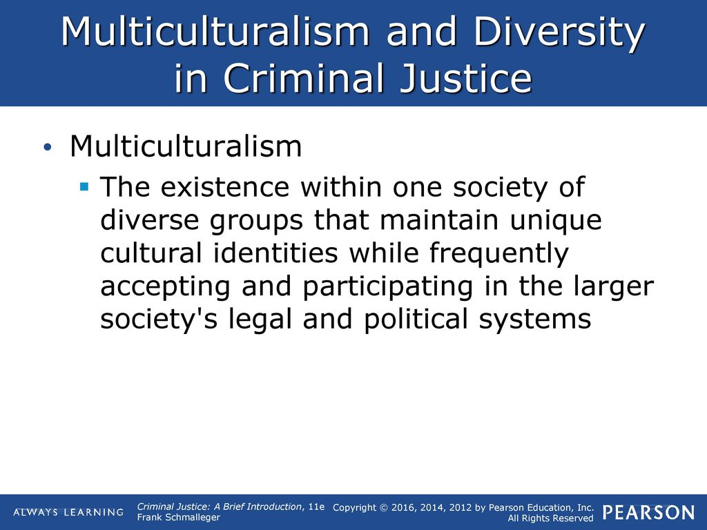 1 what is criminal justice?. - ppt download