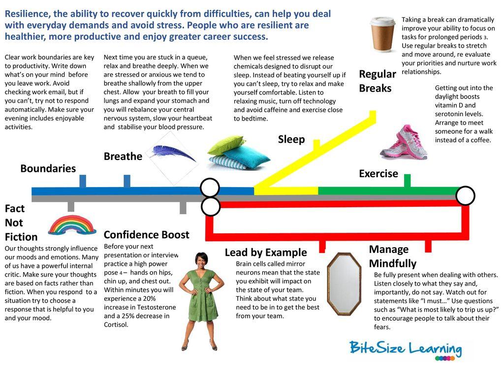 Regular Breaks Sleep Breathe Boundaries Exercise Fact Not