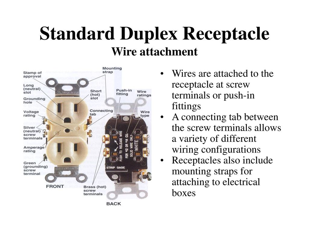 Electrical Receptacles Ppt Download Wiring Templates Powerpoint Template Standard Duplex Receptacle Wire Attachment