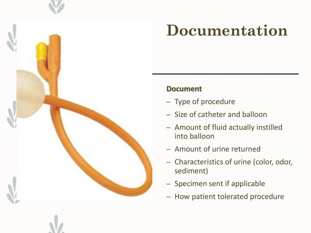 URINARY ELIMINATION & Catheters - ppt download