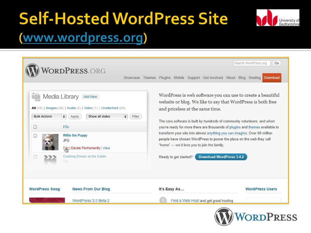Creating Blogs and Websites: An Introduction to WordPress