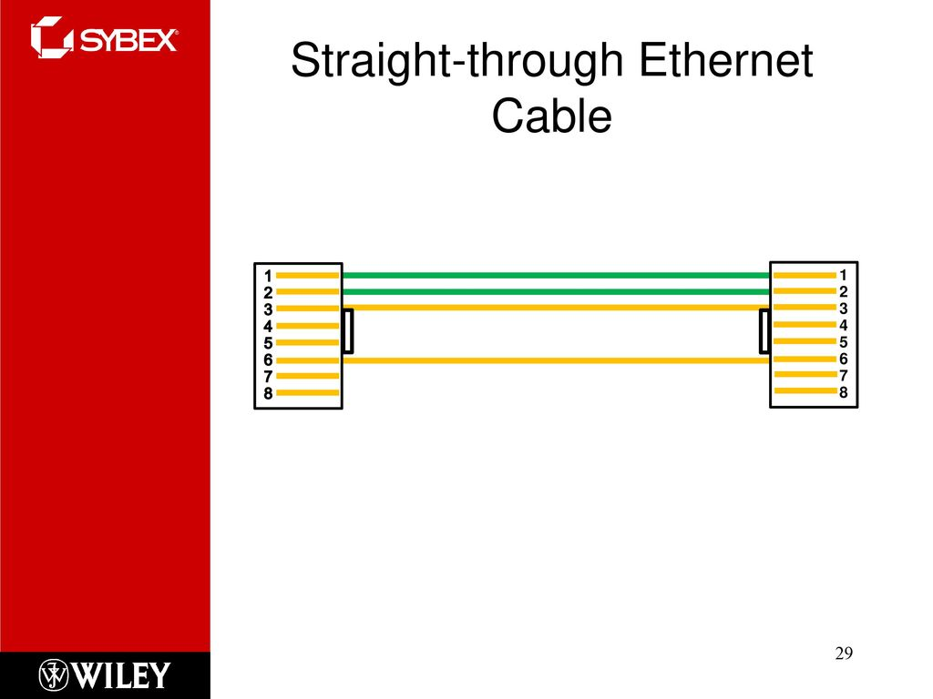 29 Straight-through Ethernet Cable