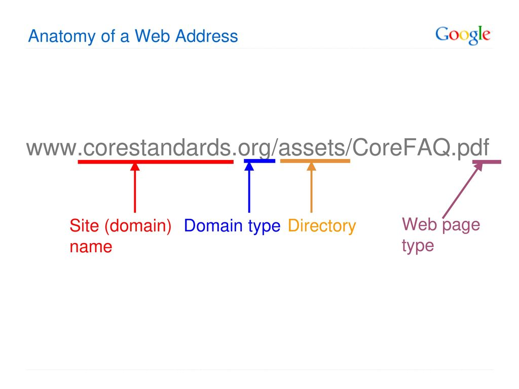 Colorful Anatomy Of A Web Address Crest Physiology Of Human Body