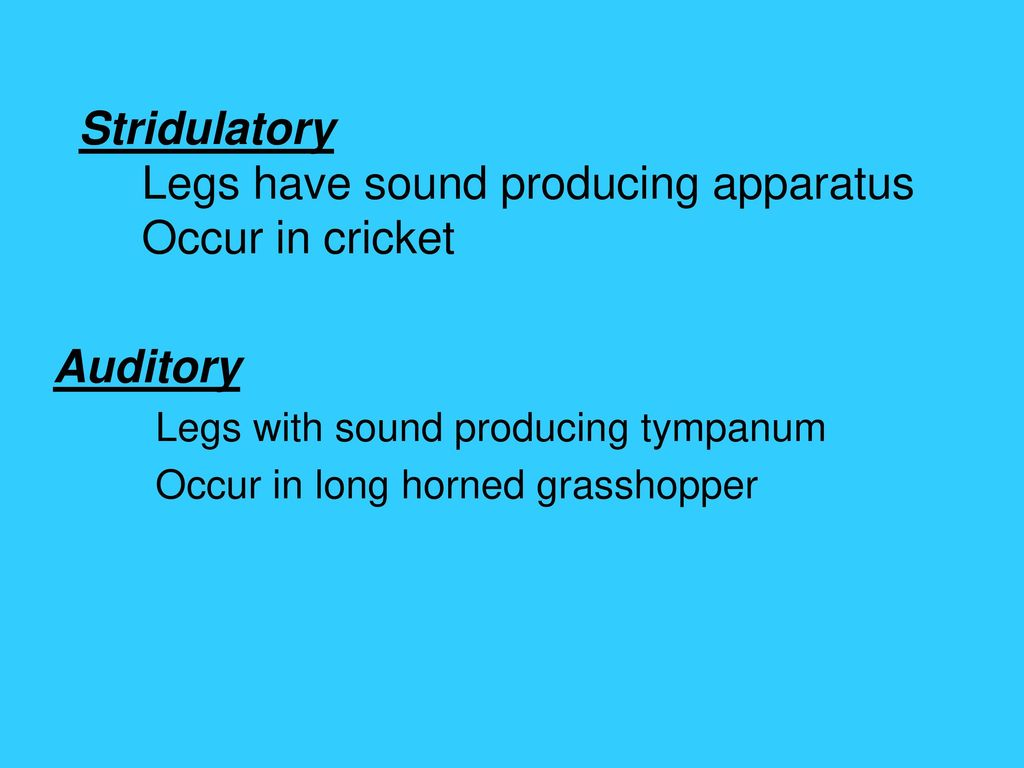 Stridulatory Legs have sound producing apparatus Occur in cricket
