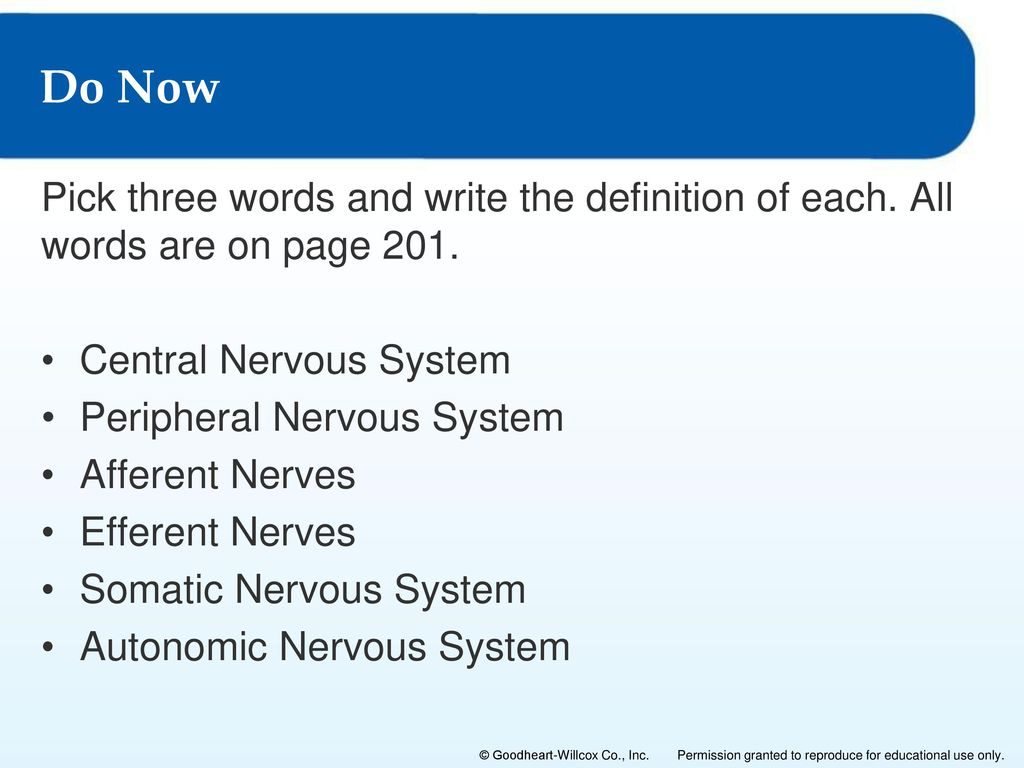 The Nervous System 6 Lesson 6.1: Overview of the Nervous System ...