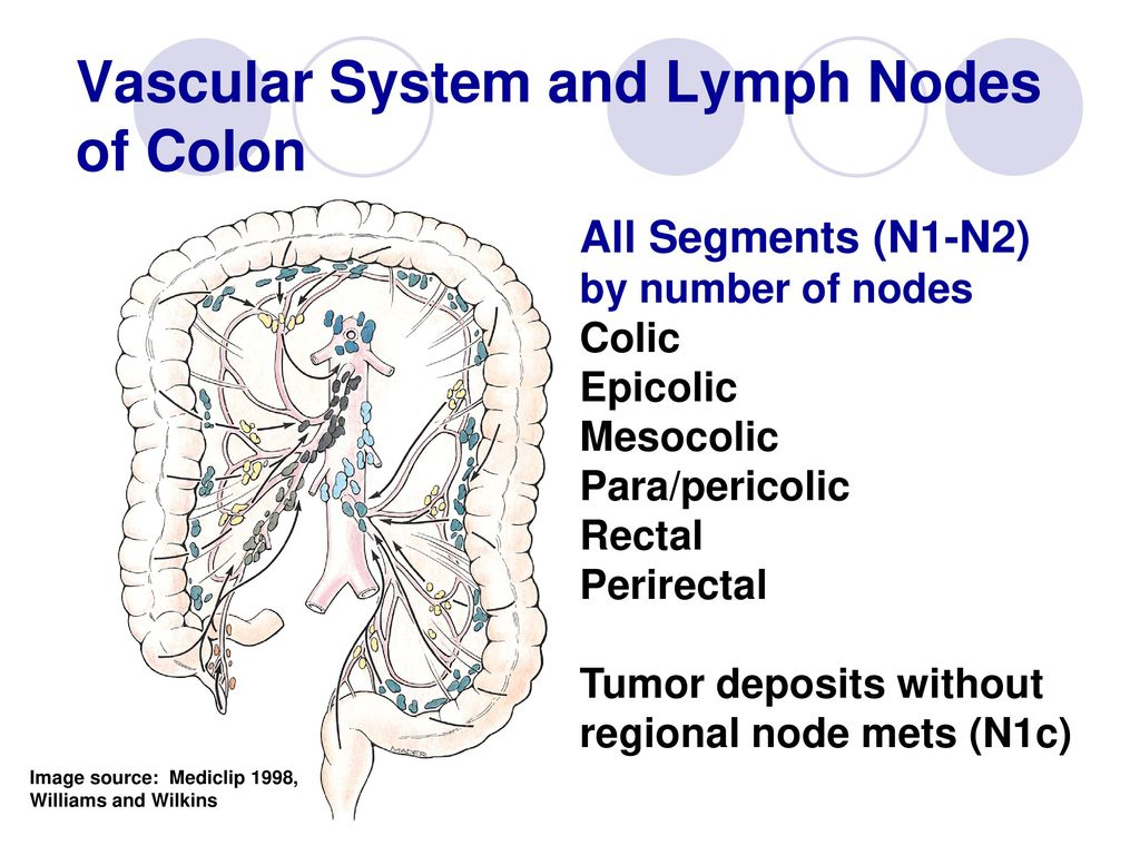 In The Know About Lymph Nodes Fields Ppt Download