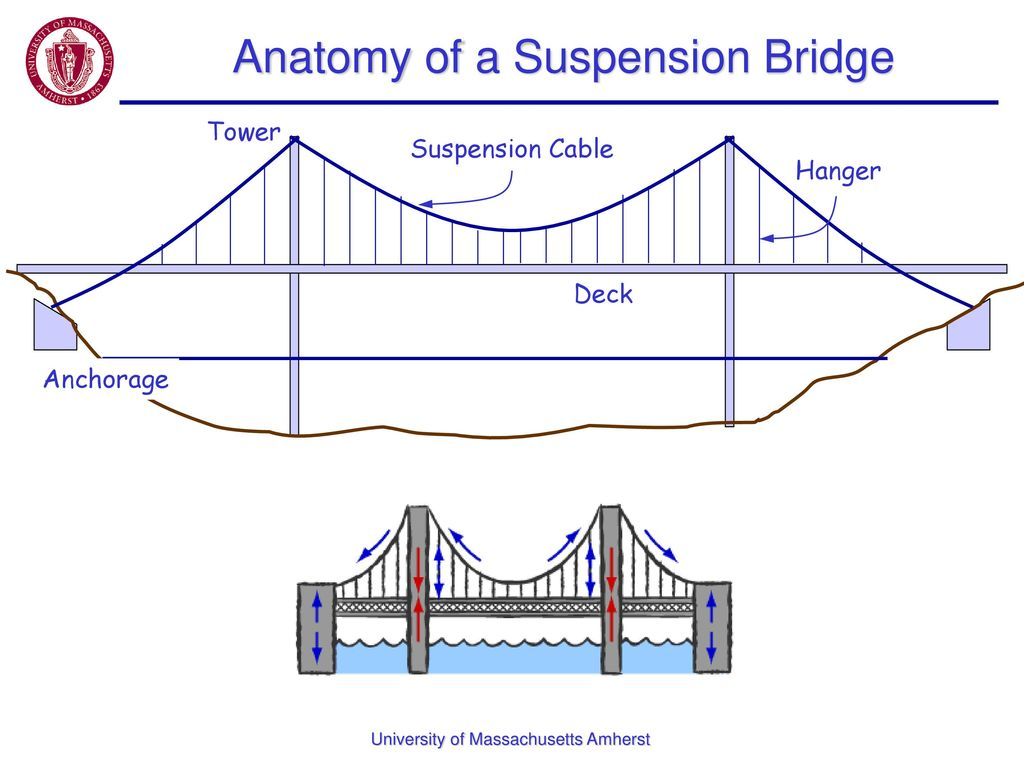 Structural Engineering: Bridges - ppt download