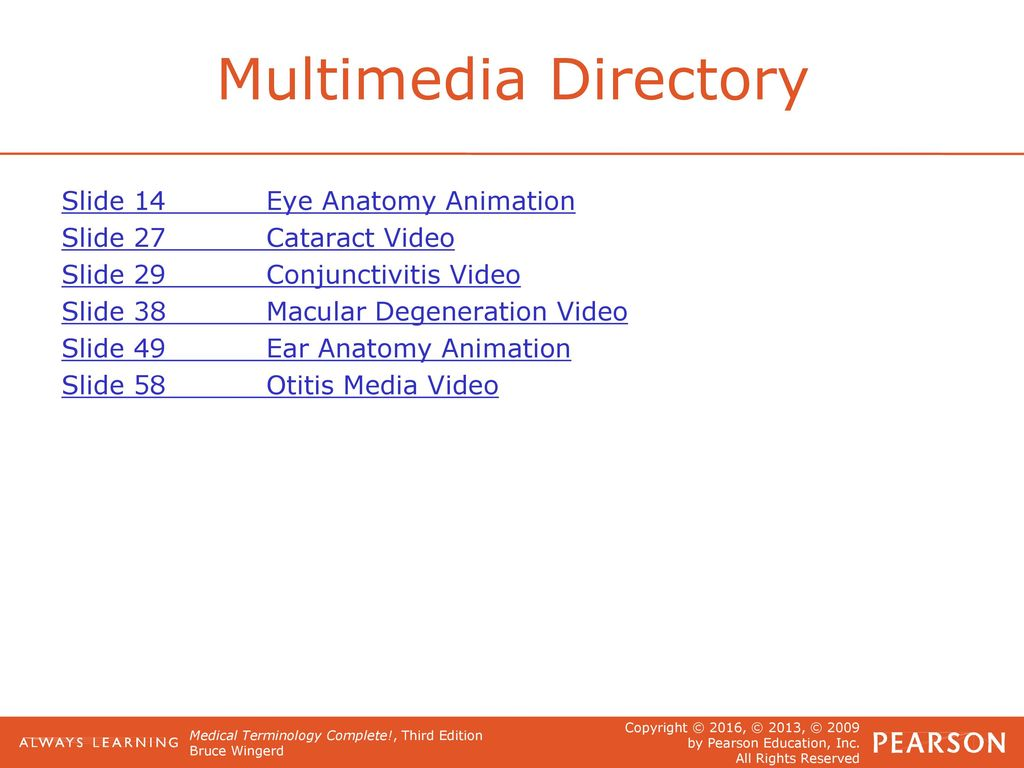14 The Special Senses Of Sight And Hearing Ppt Download