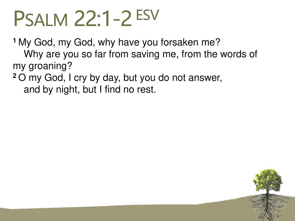 Psalm 22:1-2 ESV 1 My God, my God, why have you forsaken me? Why ...