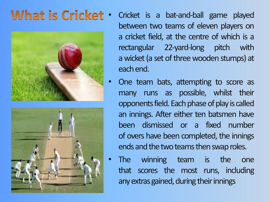 Cricket Ppt Download