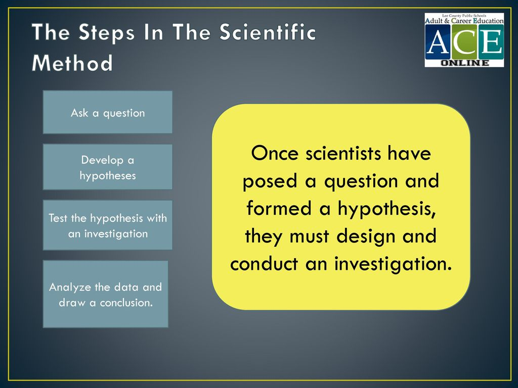 The Steps In The Scientific Method