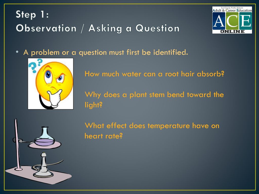 Step 1: Observation / Asking a Question