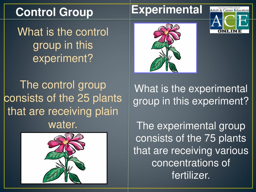 Experimental Control Group