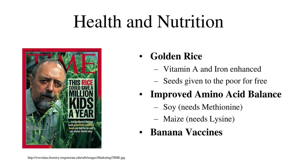 Food Biotechnology Ethics Ppt Download