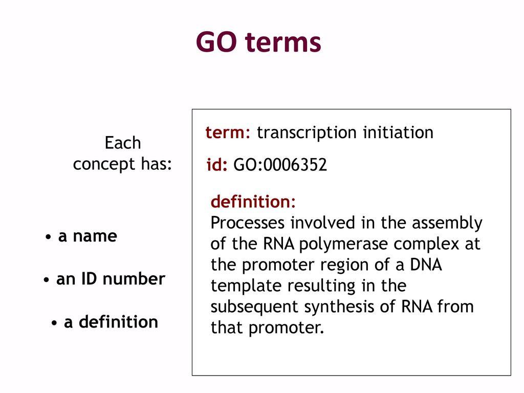 Gene Annotation & Gene Ontology - ppt download