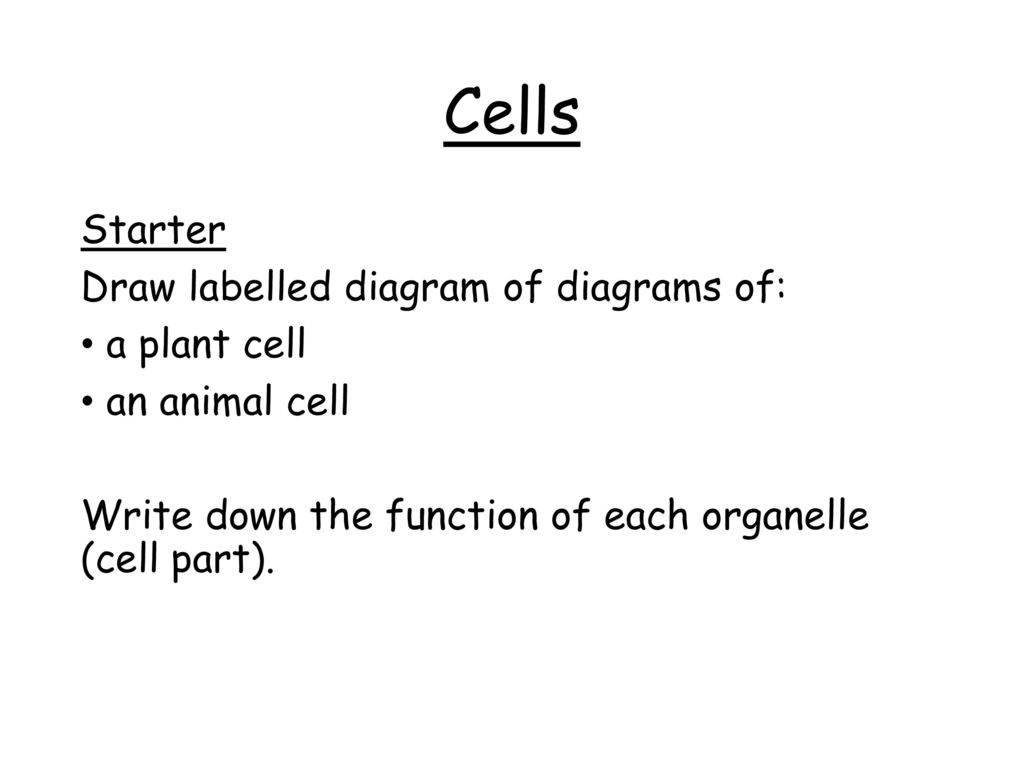Wjec Double Science Biology Unit Ppt Download Plant Cell Labelled Diagram 3 Cells Starter Draw