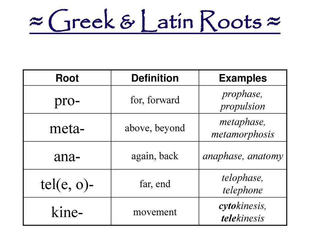 Greek Latin Roots A An Ann Enn Endo Micro Arch