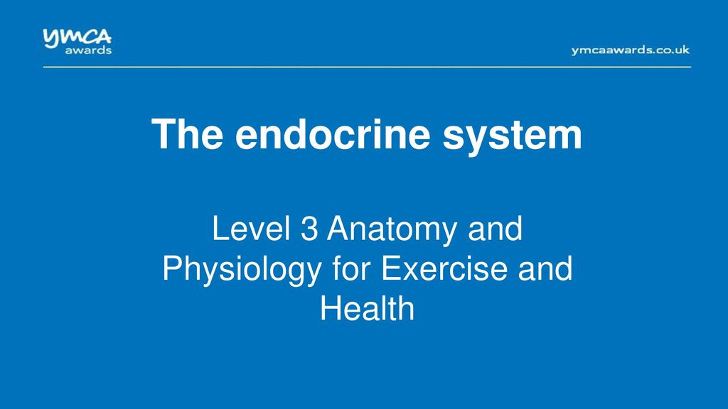 Level 3 Anatomy and Physiology for Exercise and Health - ppt download