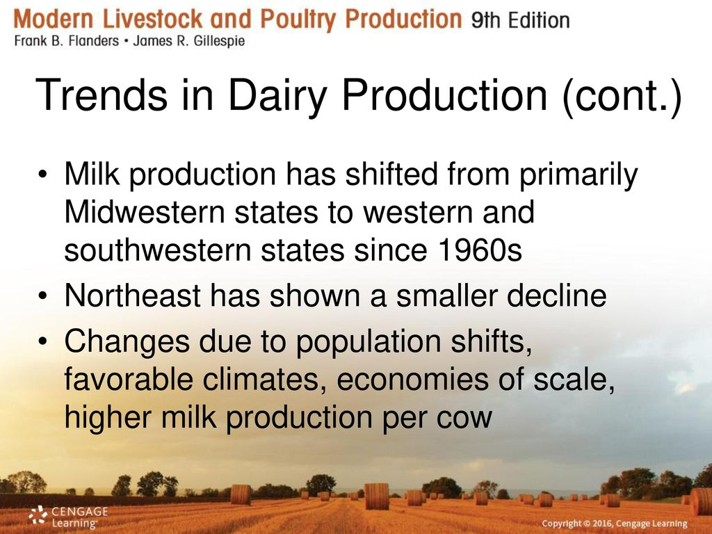 Breeds of Dairy Cattle Chapter ppt download