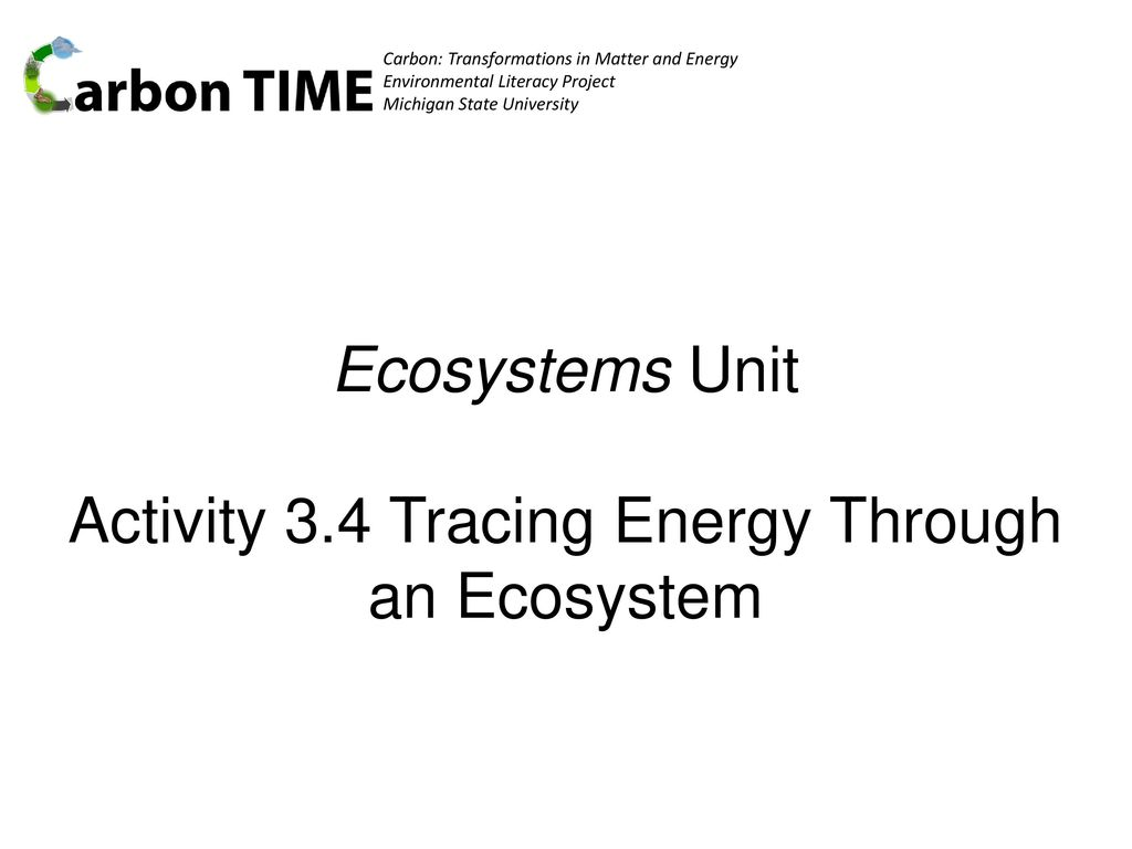 Ecosystems Unit Activity 3.4 Tracing Energy Through an Ecosystem ...