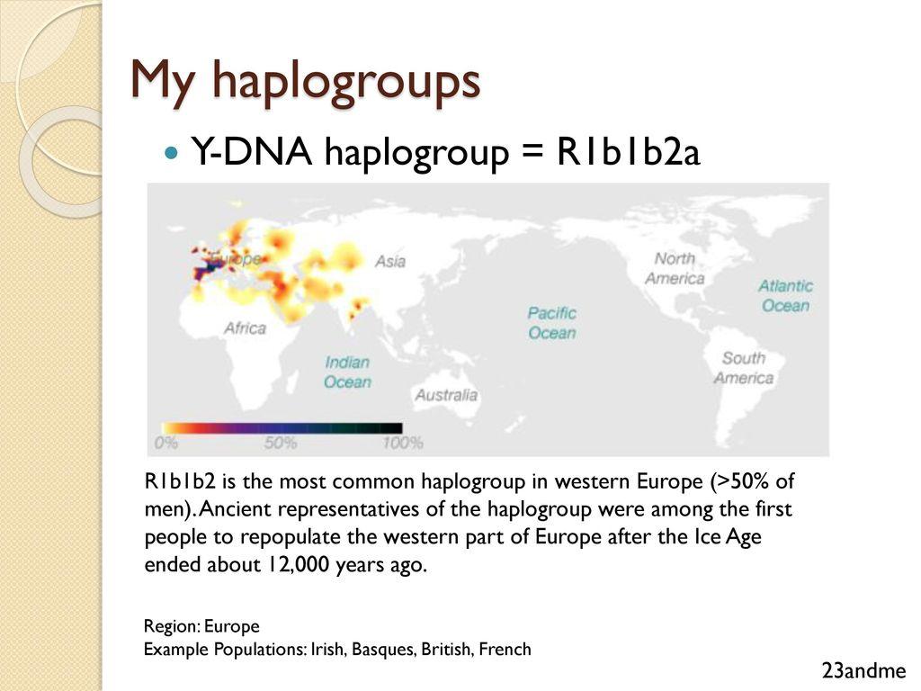 K2a Haplogroup