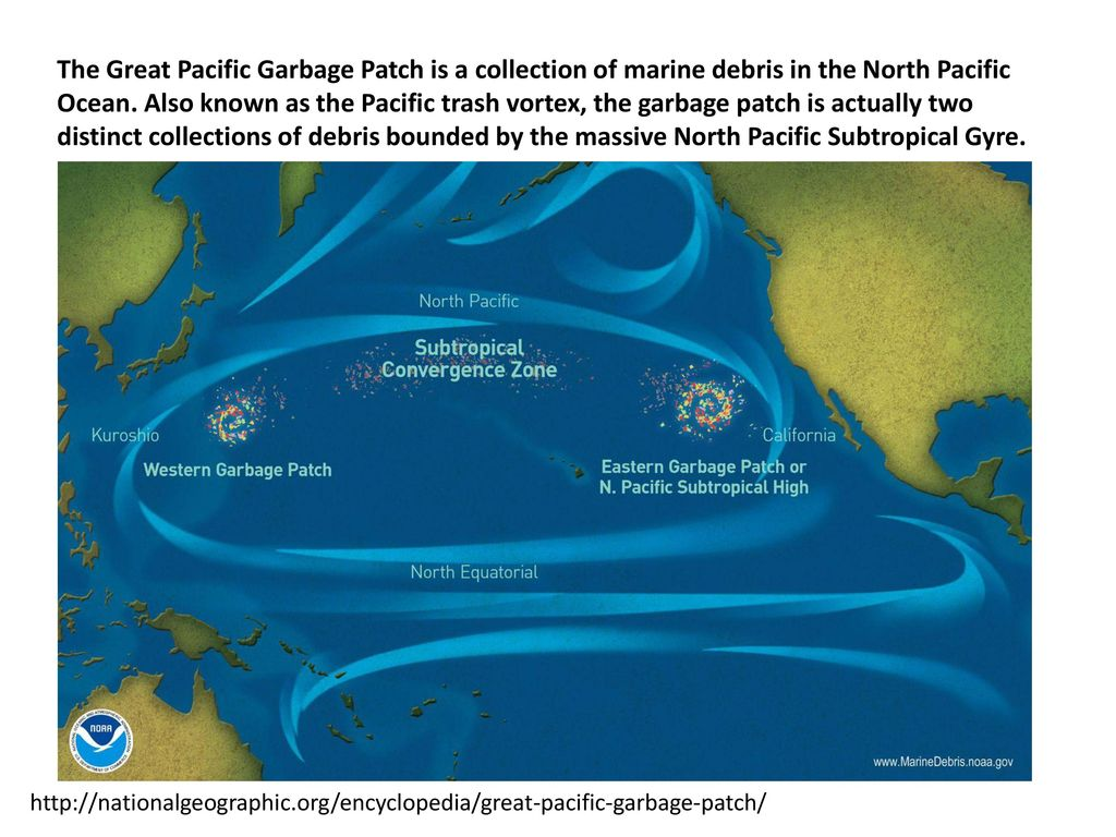 the pacific ocean garbage patch essay Home free essays the great pacific garbage patch get custom essay sample written according to your requirements.
