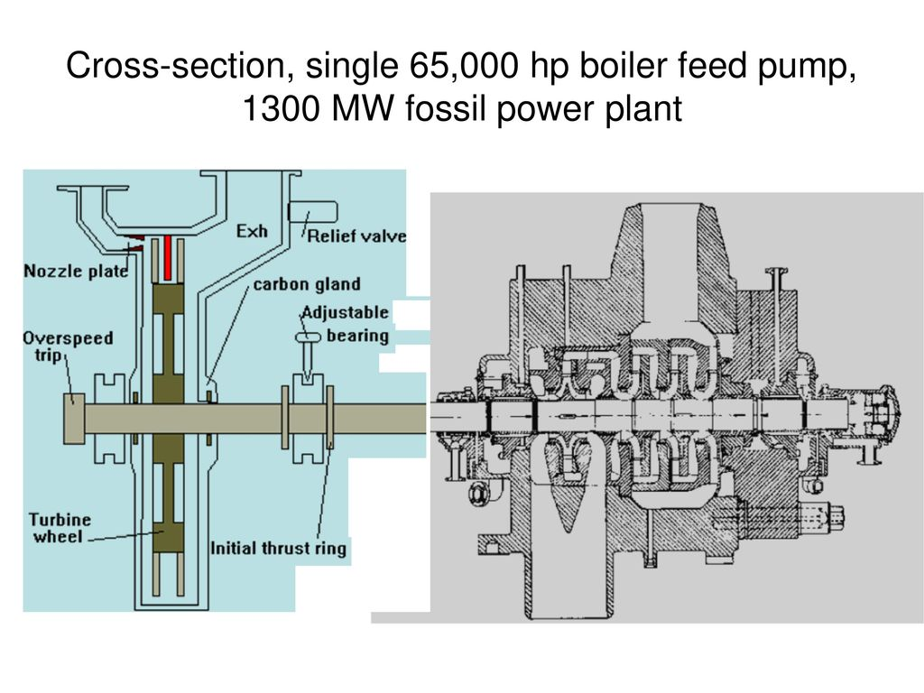 Pumps in Steam Power Plants - ppt download