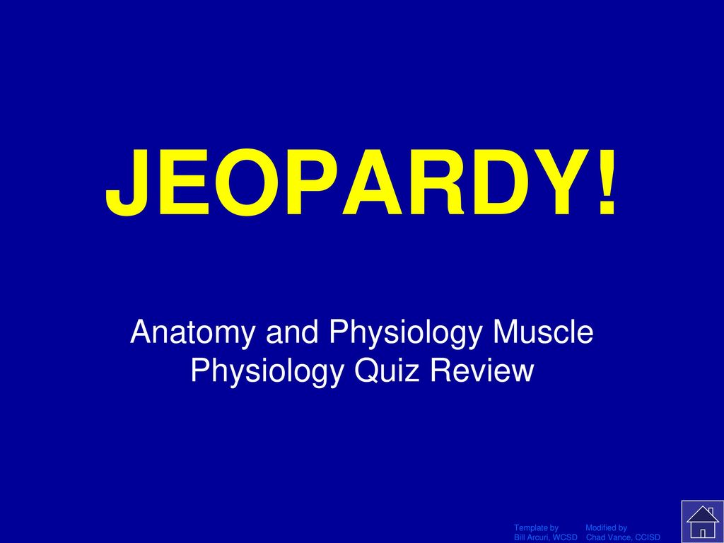 Anatomy and Physiology Muscle Physiology Quiz Review - ppt