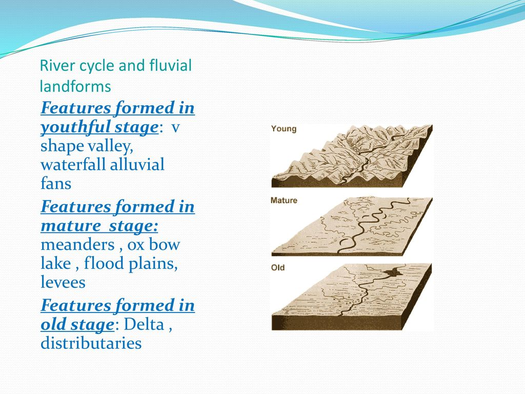 Fluvial landforms in mature stage of river