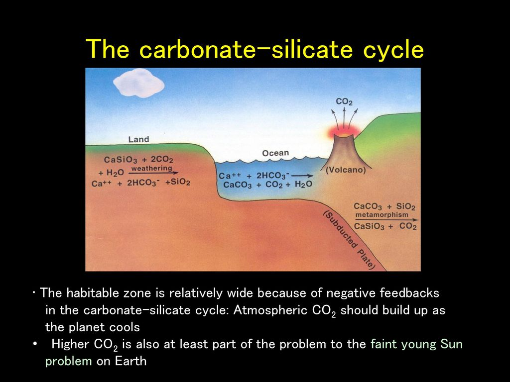 The carbonate-silicate cycle