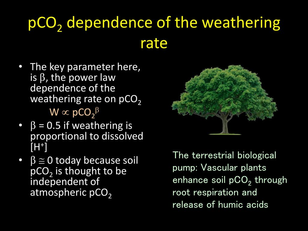 pCO2 dependence of the weathering rate