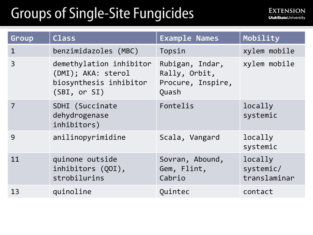 Fungicides and IPM Program Updates - ppt download