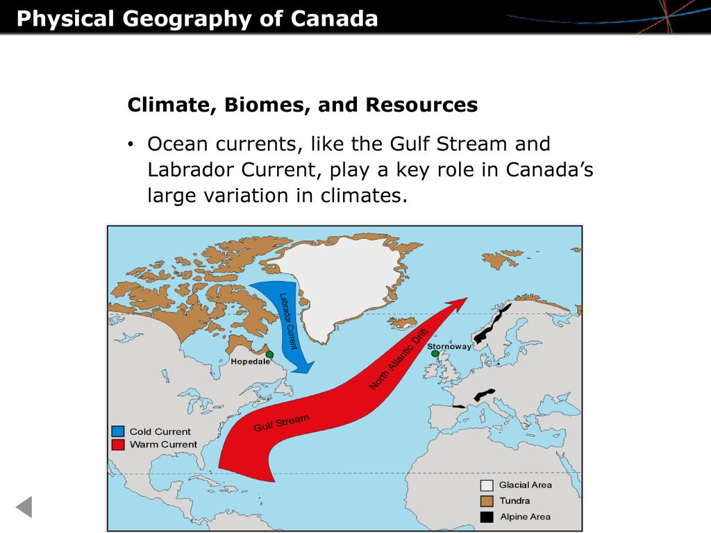 Labrador Current plays a big role in climate formation 48