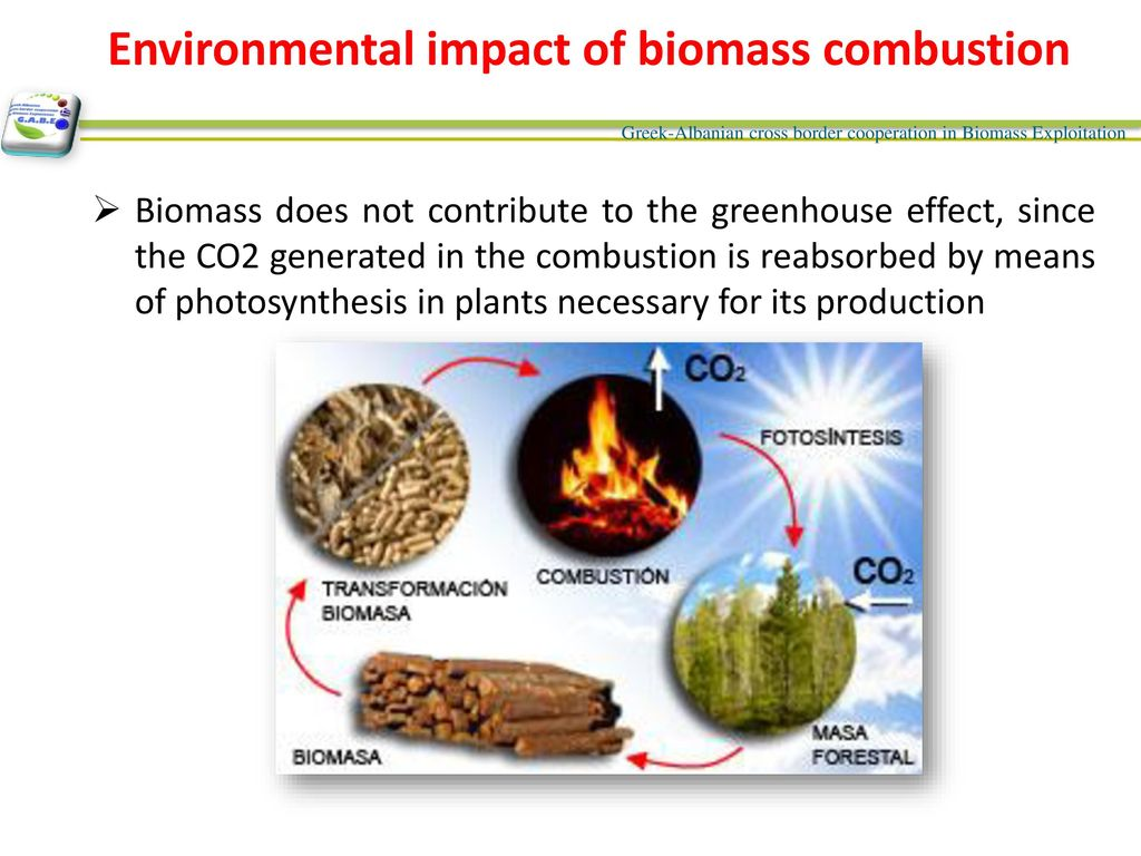 Contents Direct combustion Biomass energy Basic Definitions - ppt