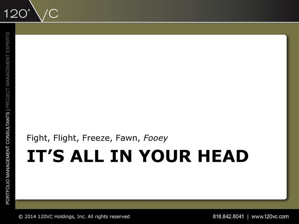 Fight, Flight, Freeze, Fawn, Fooey - ppt download