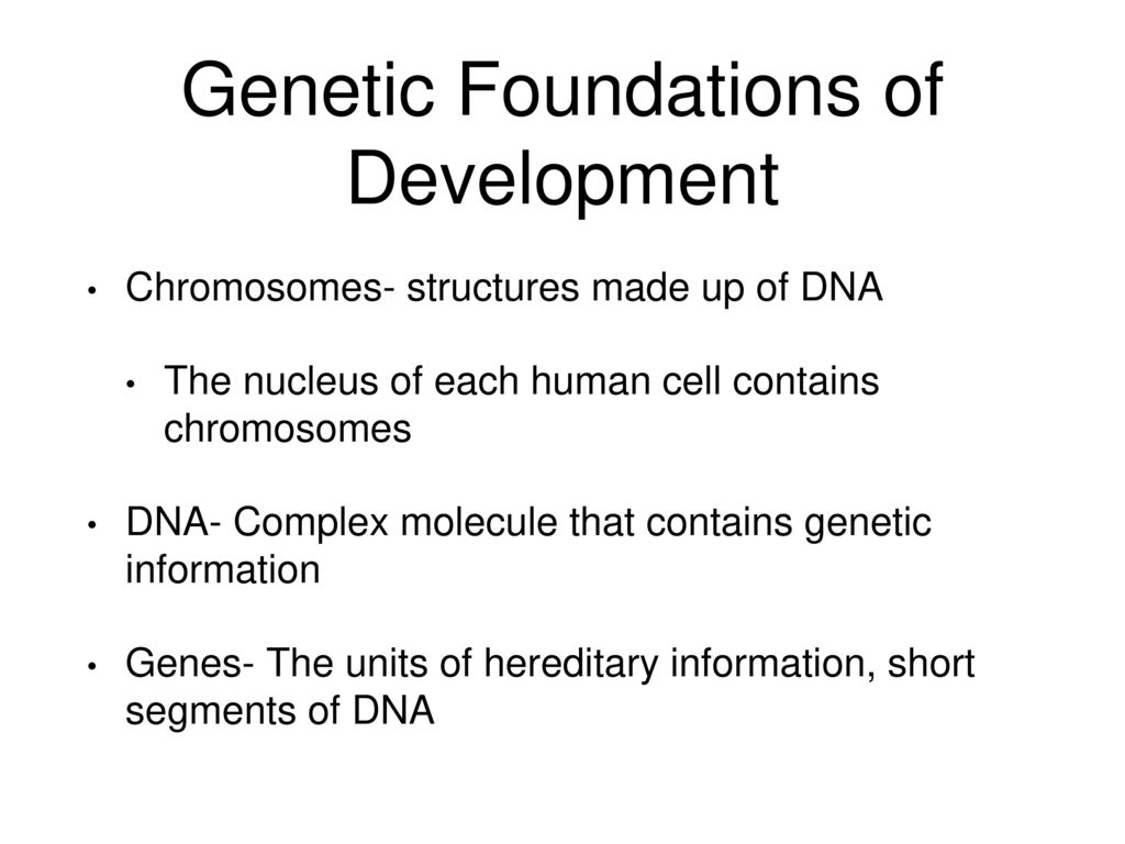 biological foundations of human development