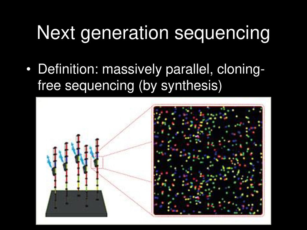next generation sequencing - ppt download