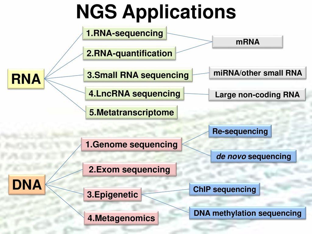 次世代基因體定序技術在生醫研究與生技產業之應用 - ppt download