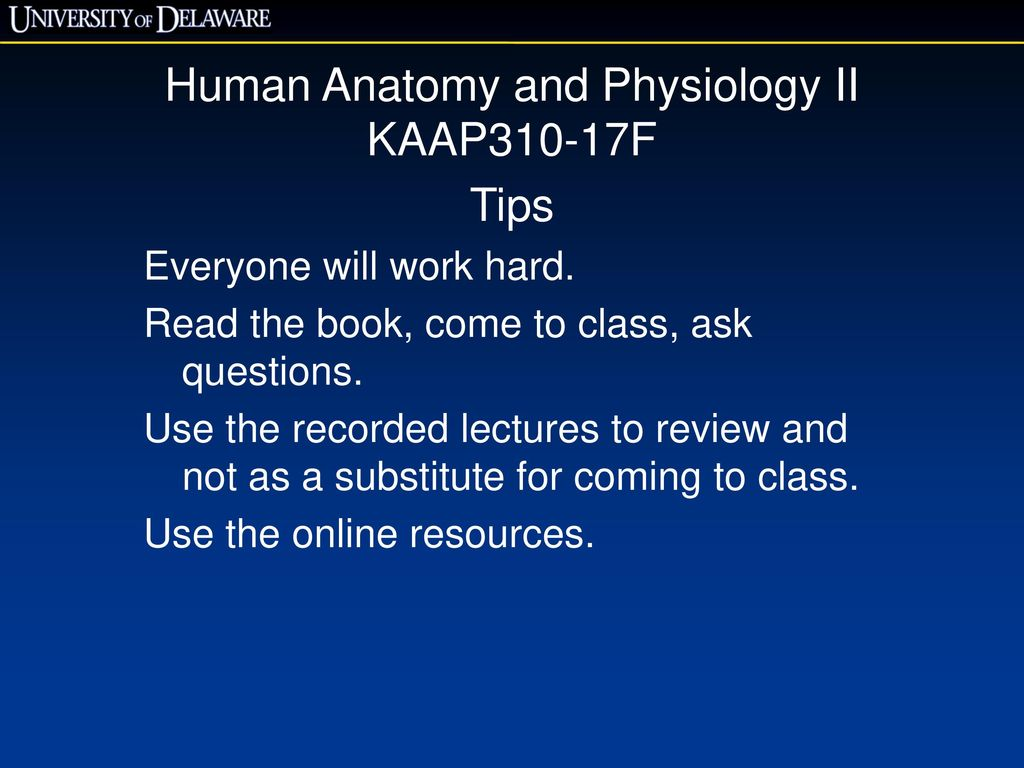 Human Anatomy and Physiology II KAAP310-17F - ppt download