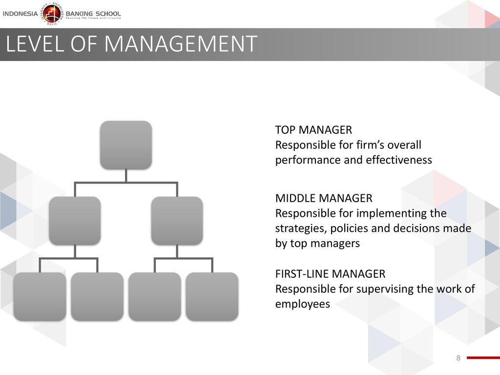 LEVEL OF MANAGEMENT TOP MANAGER
