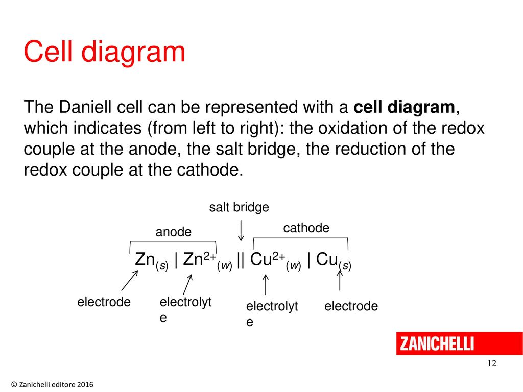 1311 ppt download 131111 cell diagram ccuart Image collections