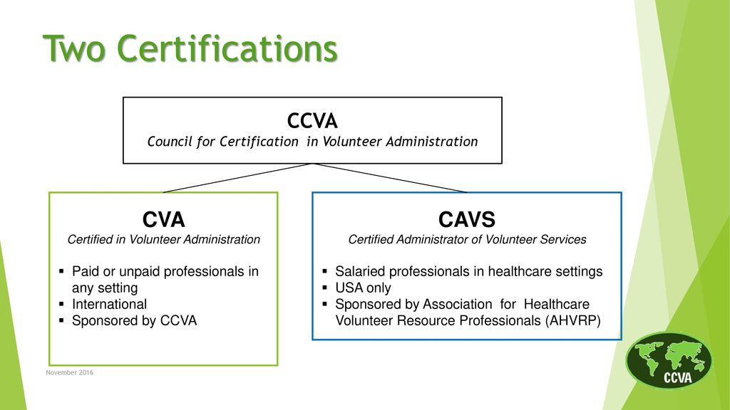 The CVA Credential: A Mark of Excellence - ppt download