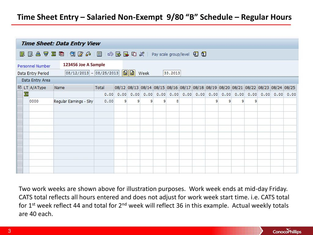 Time Sheet Entry Salaried Non Exempt 9 80 B Schedule Regular Hours