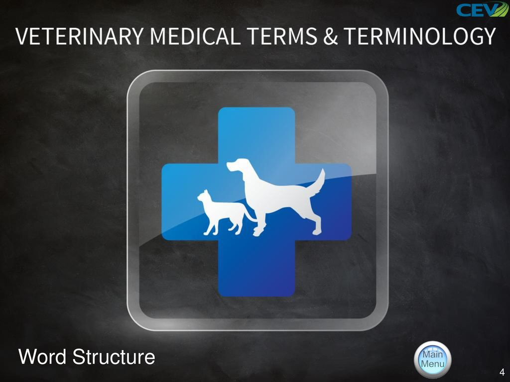 Objectives To Identify Veterinary Terms And To Discover Their