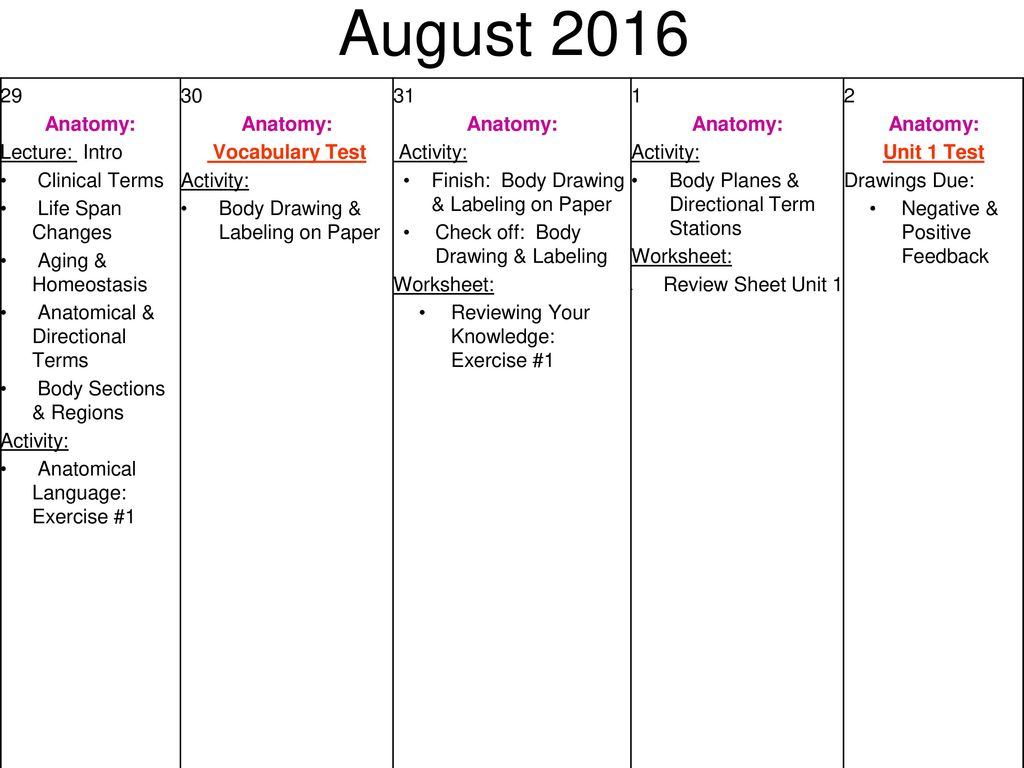 August First Day of School Anatomy: Activity: CP: Syllabus - ppt ...