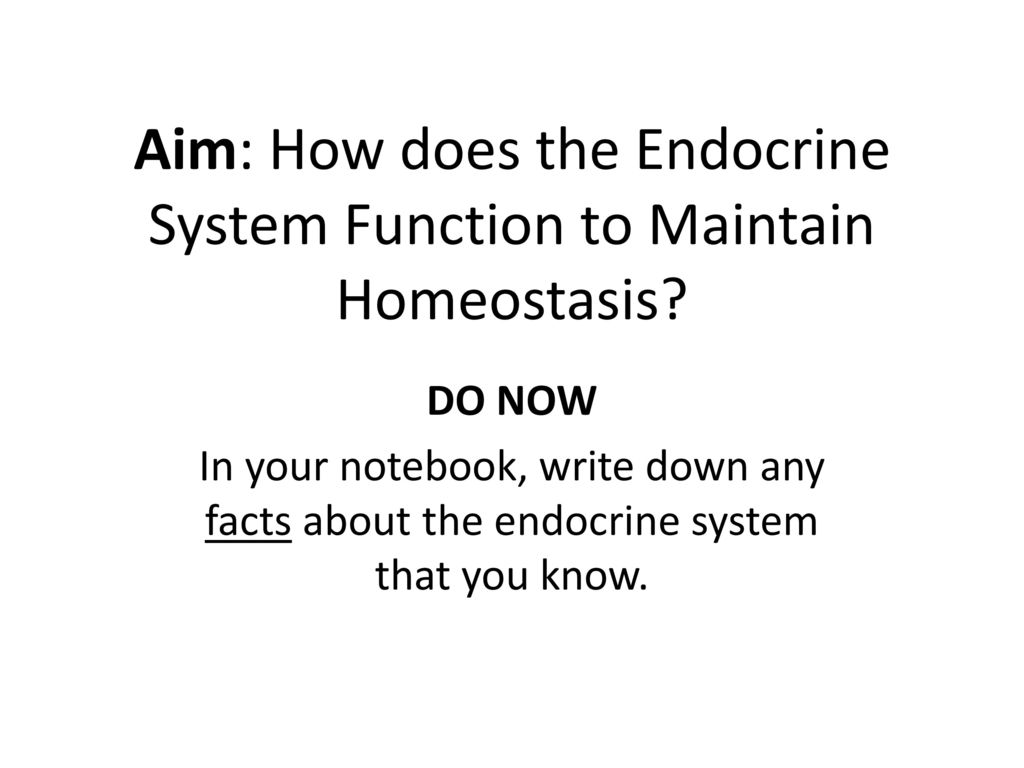 Aim How Does The Endocrine System Function To Maintain Homeostasis