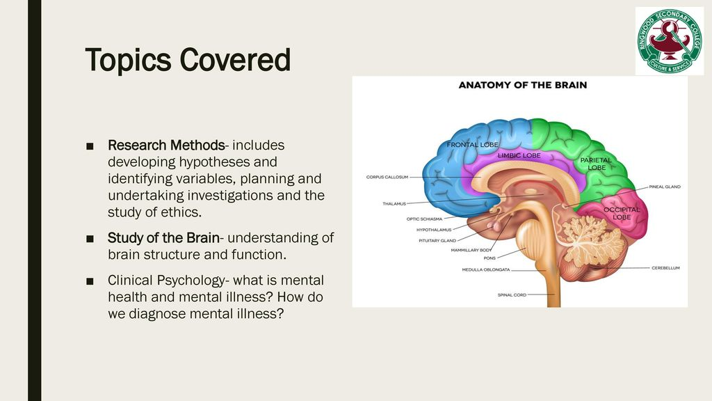 Pathway Subject S Vce Psychology Units Ppt Download